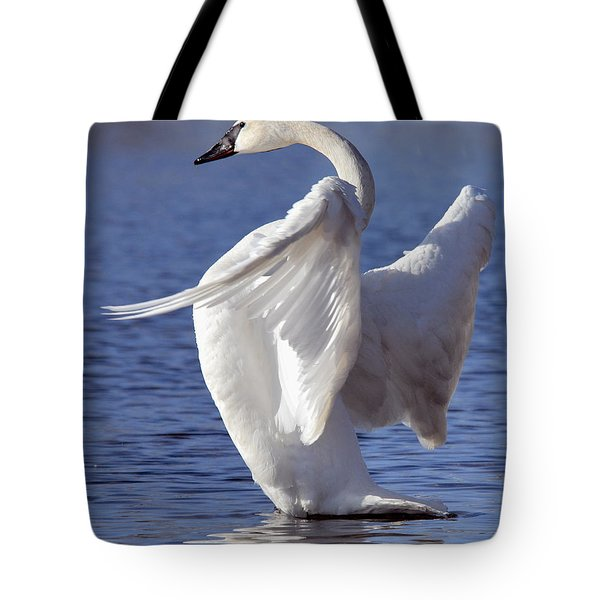 Flapping Swan Tote Bag