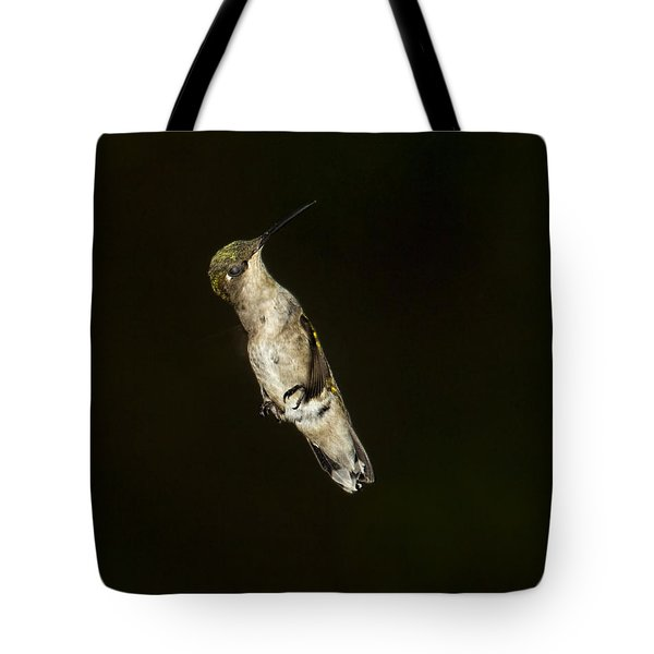 Tote Bag featuring the photograph Flaps Down by Barbara Bowen