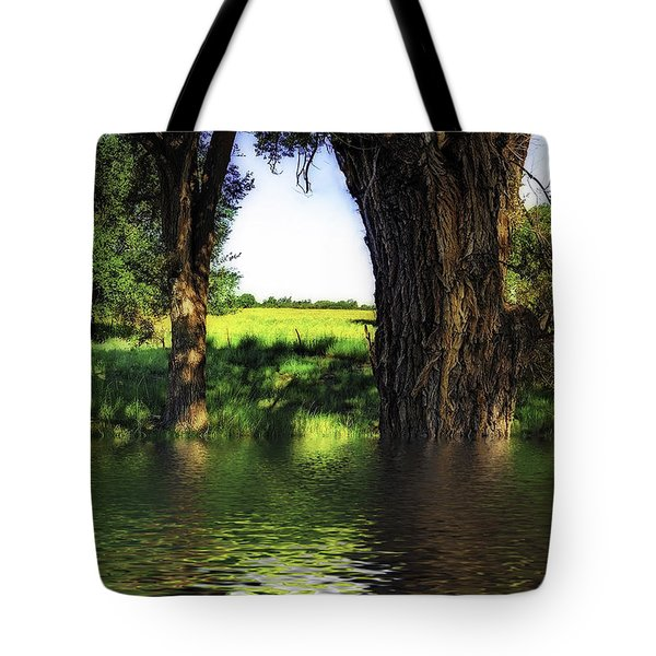 Flash Flood Tote Bag