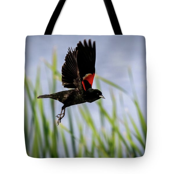 Tote Bag featuring the photograph Flash Of Red by Windy Corduroy