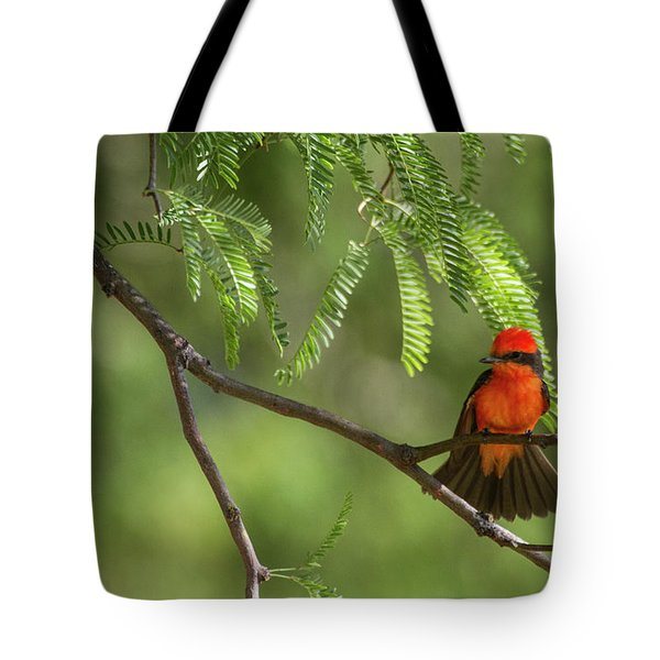 Flashy Vermillion Tote Bag