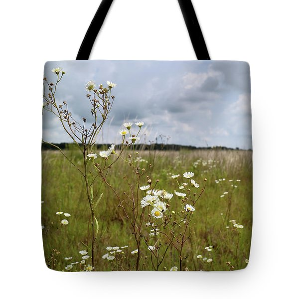 Fleabane Daisy Tote Bag by Scott Kingery
