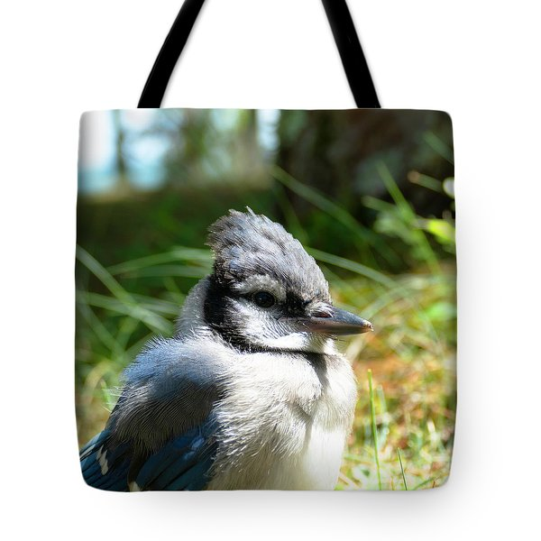 Tote Bag featuring the photograph Fledgling by Sally Sperry