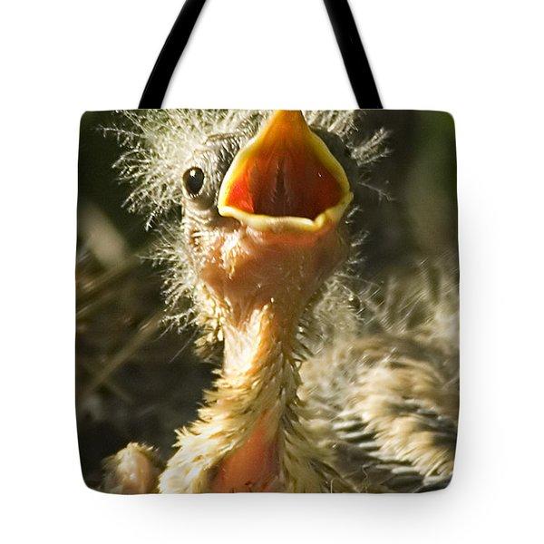 Fledgling Yellow Warbler Tote Bag