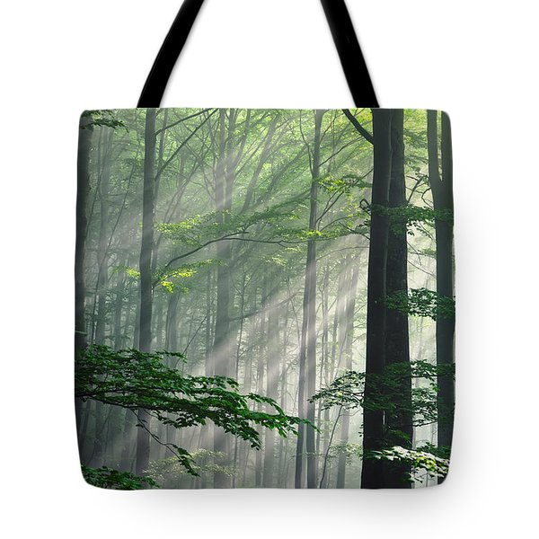 Fleeting Beams Tote Bag by Evgeni Dinev