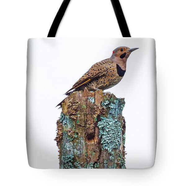 Flicker Perched On Tree Tote Bag