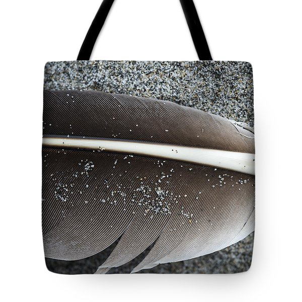 Flight Feather Tote Bag