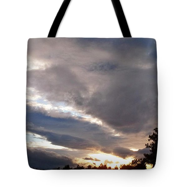 Flight Into Evening Tote Bag by Glenn McCarthy Art and Photography