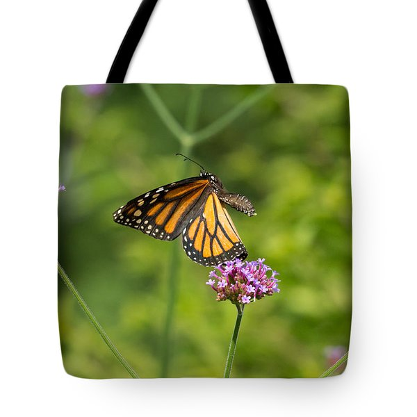 Flight Of The Monarch 1 Tote Bag