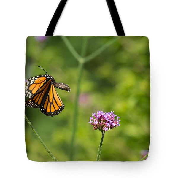 Flight Of The Monarch 2 Tote Bag