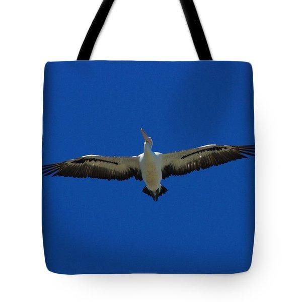 Flight Of The Pelican Tote Bag by Blair Stuart