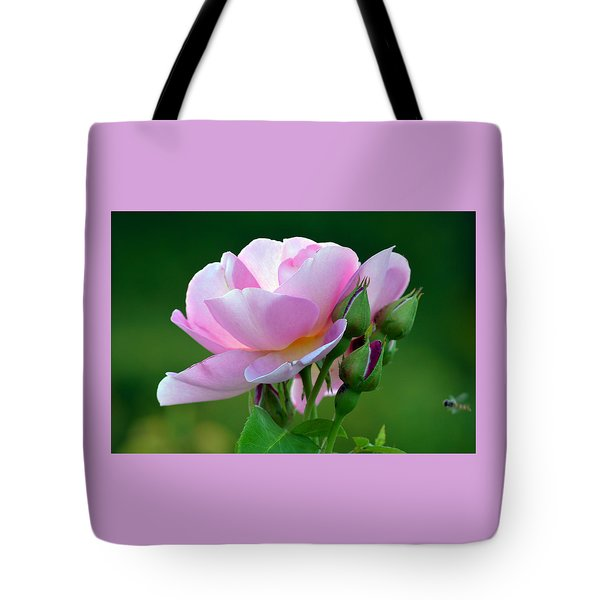 Flight Of The Pollinator. Tote Bag by Terence Davis