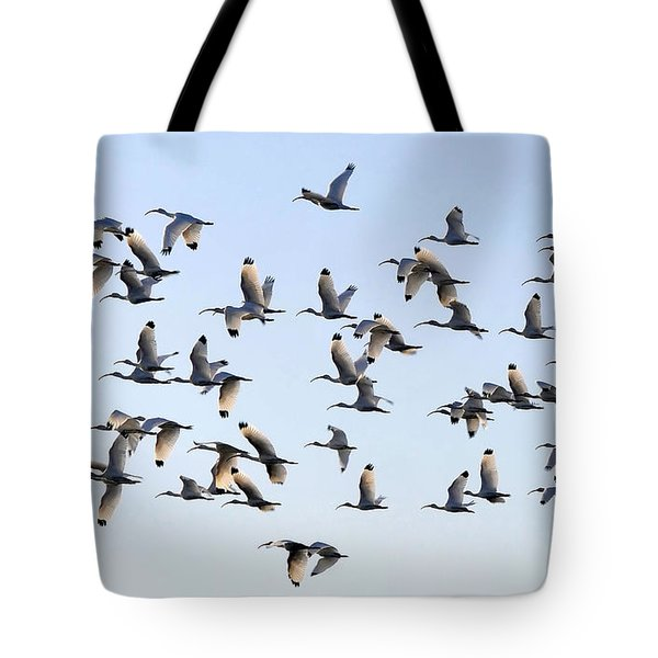 Flight Of The White Ibis Tote Bag by David Lee Thompson
