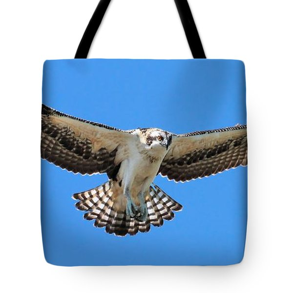 Tote Bag featuring the photograph Flight Practice Over The Nest by Debbie Stahre