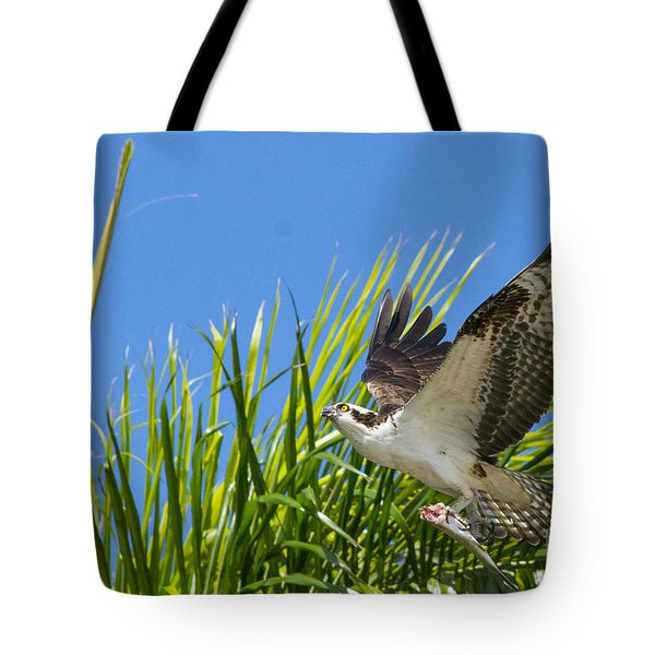 Flight Through The Palms Tote Bag