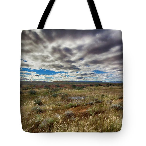 Tote Bag featuring the photograph Flinders Ranges Fields  by Douglas Barnard