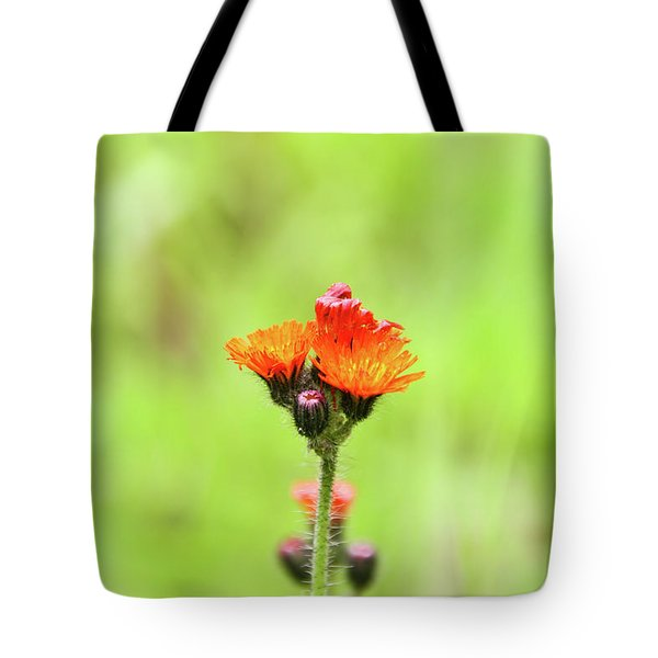 Tote Bag featuring the photograph Fll-2 by Ellen Lentsch
