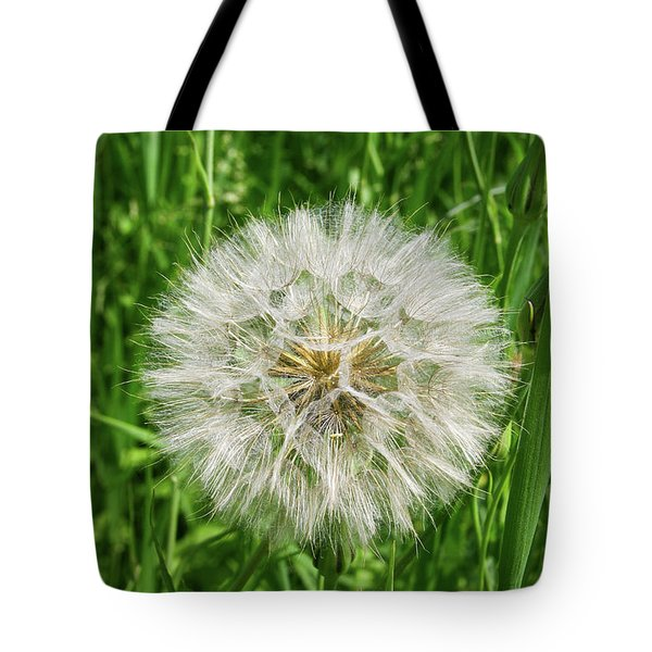 Tote Bag featuring the photograph Fll-3 by Ellen Lentsch