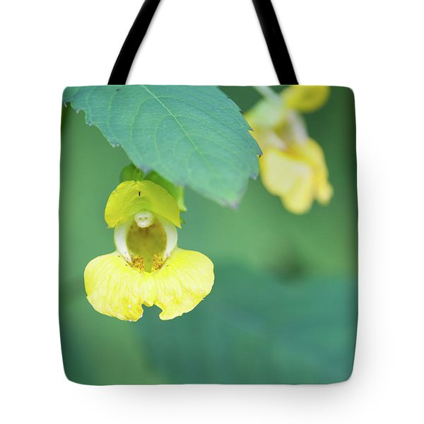 Tote Bag featuring the photograph Fll-7 by Ellen Lentsch