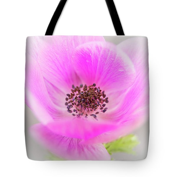 Floating Tote Bag by Caitlyn Grasso