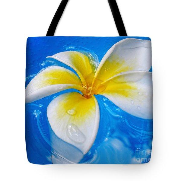 Floating Frangipani - Plumeria Alba Tote Bag by Kaye Menner