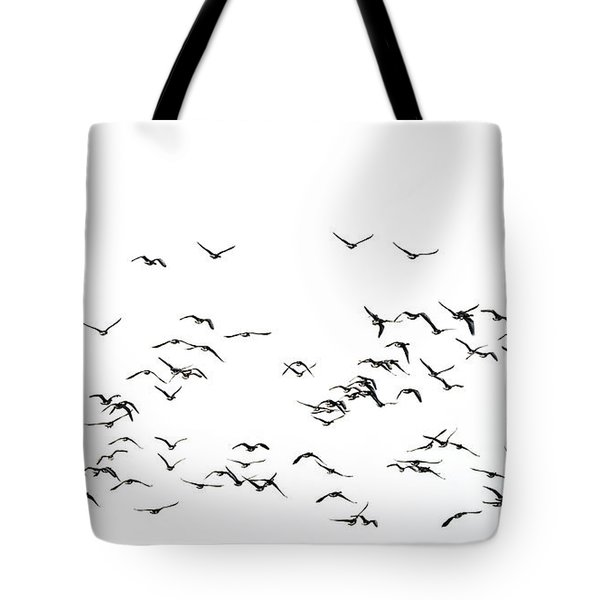 Flock Of Beautiful Migratory Lapwing Birds In Clear Winter Sky I Tote Bag by Matthew Gibson