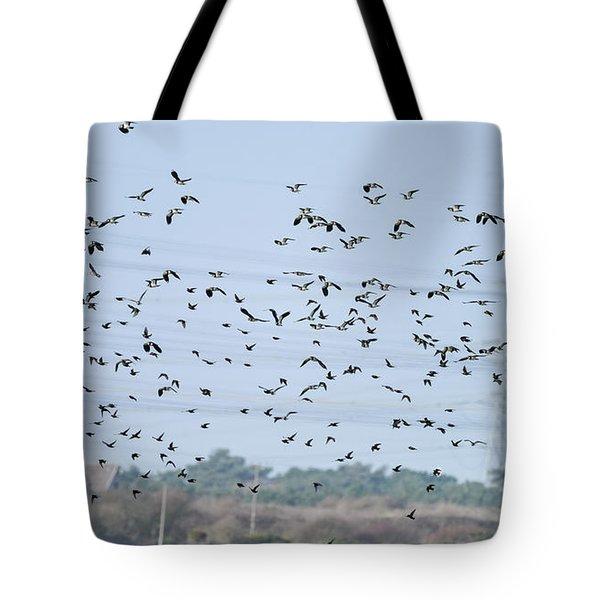 Flock Of Beautiful Migratory Lapwing Birds In Clear Winter Sky Tote Bag
