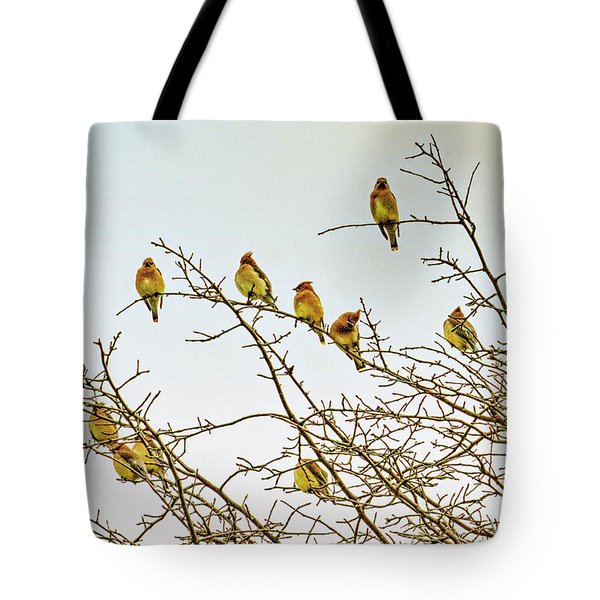 Flock Of Cedar Waxwings  Tote Bag by Geraldine Scull