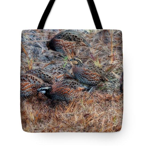 Flock Of Quail Feeding In Field Tote Bag