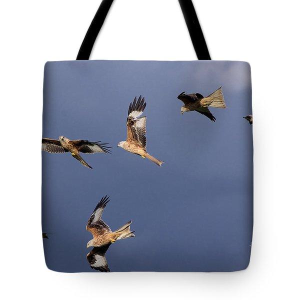 Flock Of Red Kites Tote Bag