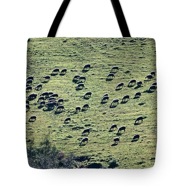 Flock Of Sheep Tote Bag