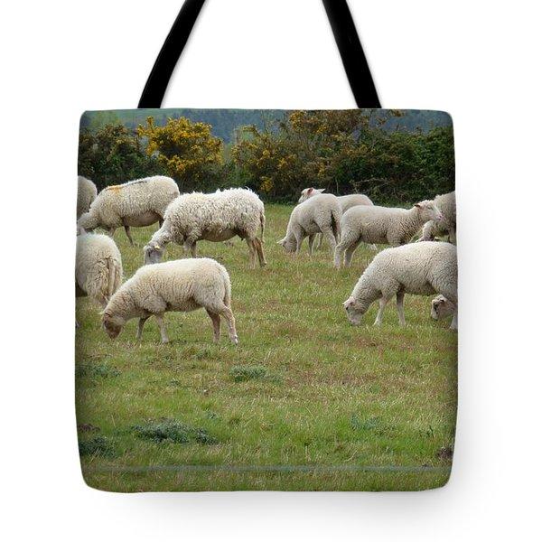 Flock Of Sheeps Tote Bag by Jean Bernard Roussilhe