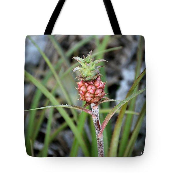 Flor Pina Tote Bag