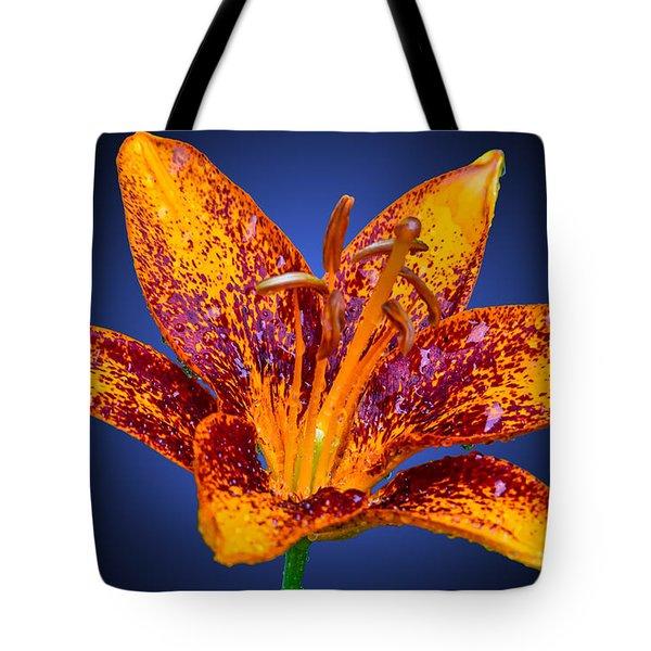 Flora Aura Tote Bag by Brian Stevens
