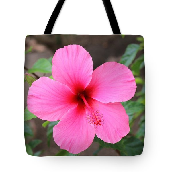 Birds Of Paradise Flower  Tote Bag by Christy Pooschke