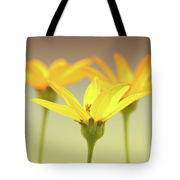 Floral Brilliance Tote Bag by Anita Oakley