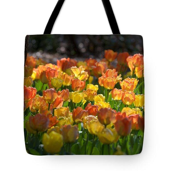 Floral Brilliance Tote Bag