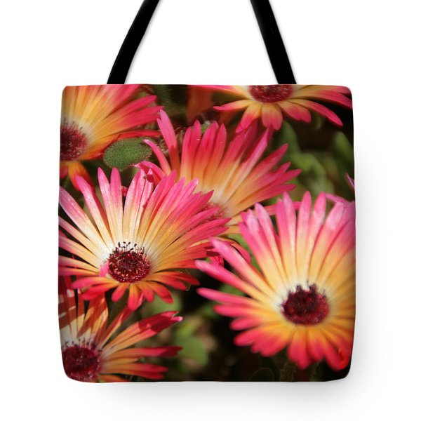 Floral Expectancy Tote Bag by Andrea Jean