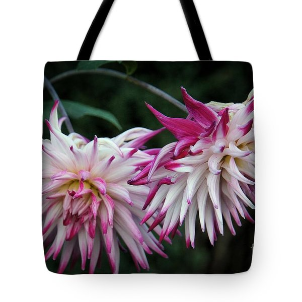 Tote Bag featuring the photograph Floral Explosion by Patricia Strand