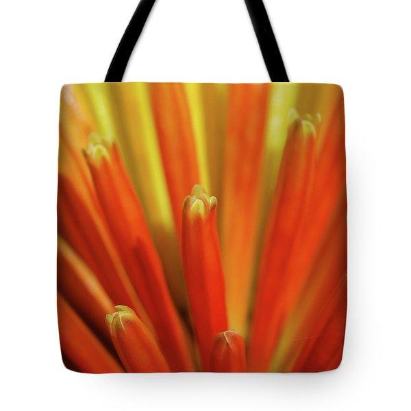 Floral Fireworks Tote Bag