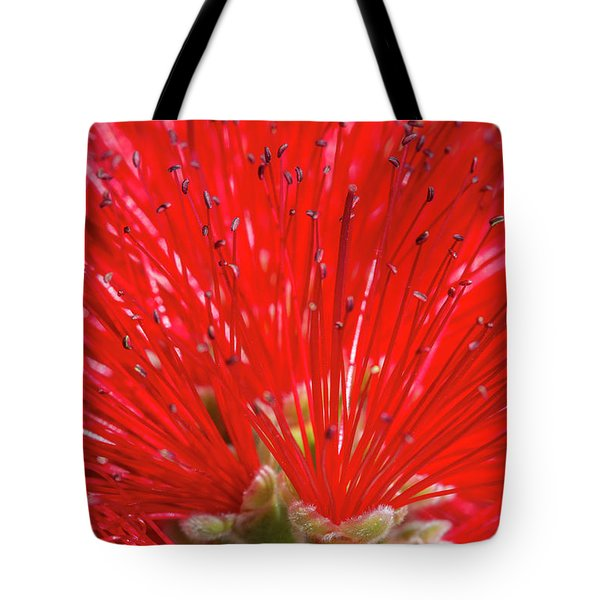 Floral Red Tote Bag