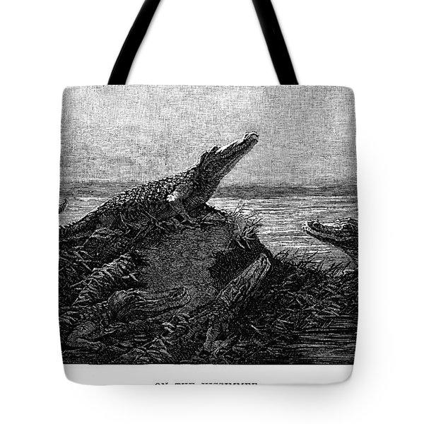 Florida Alligators, 1886 Tote Bag by Granger
