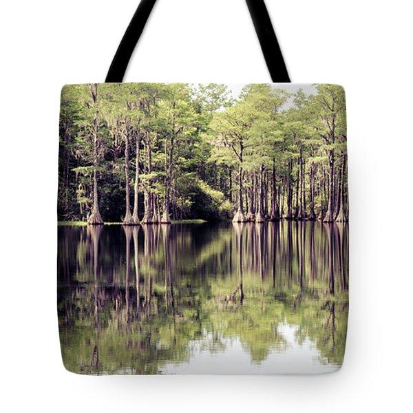 Florida Beauty 10 - Tallahassee Florida Tote Bag
