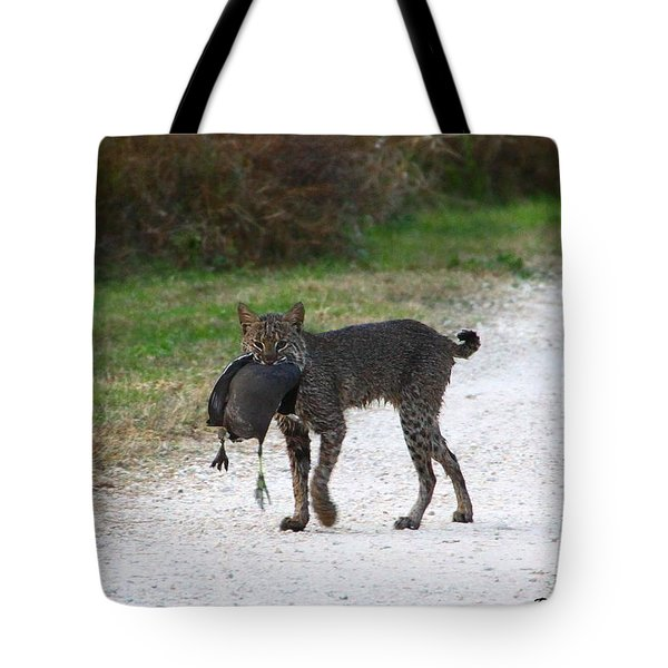 Florida Bobcat Catches An Evening Snack Tote Bag