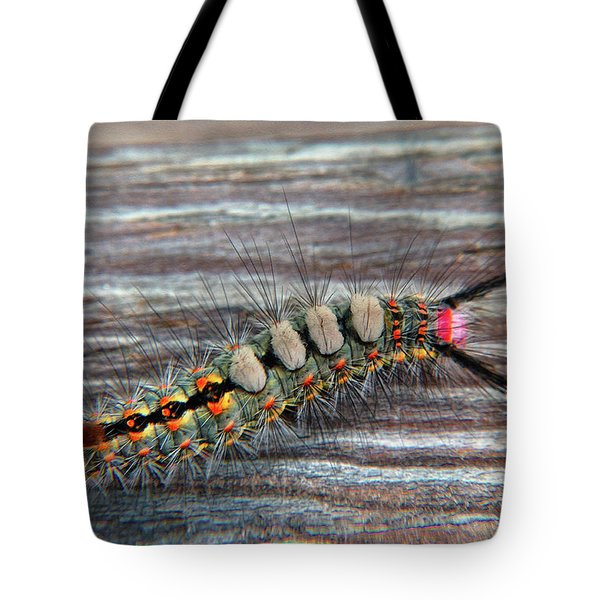 Florida Caterpillar Tote Bag by Hanny Heim