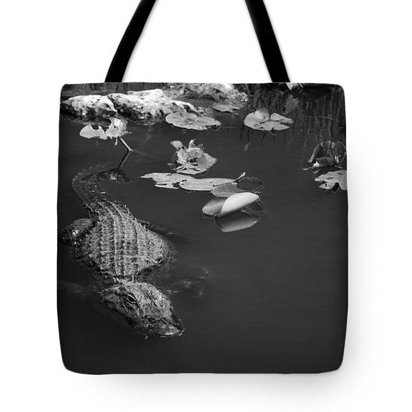 Florida Gator Tote Bag by Jason Moynihan