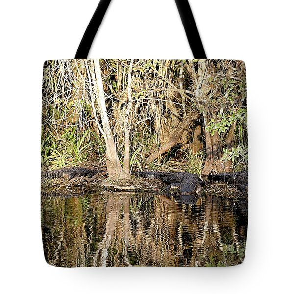Florida Gators - Everglades Swamp Tote Bag