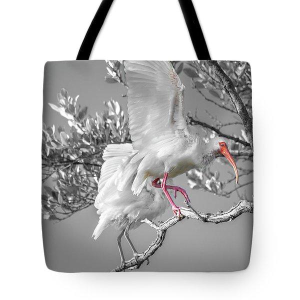Florida Keys White Ibis Tote Bag