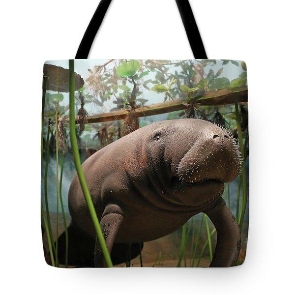 Florida Manatee Diorama Tote Bag