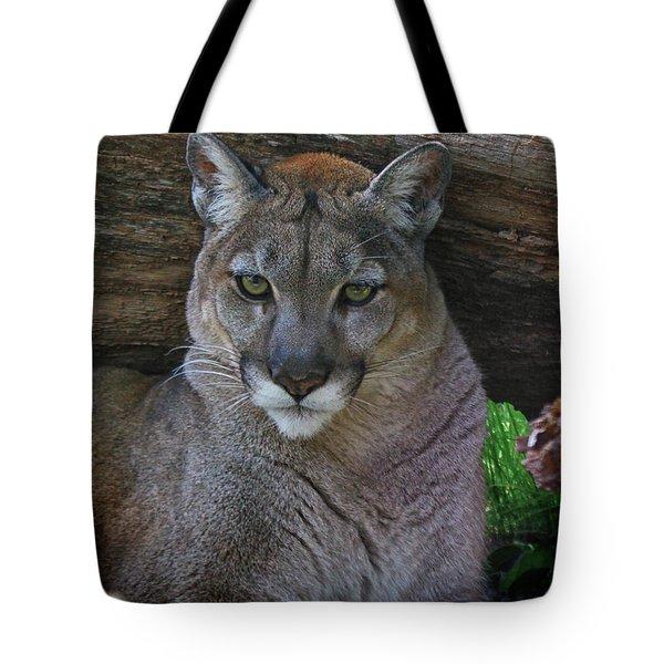 Florida Panther Tote Bag